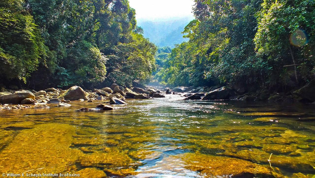 O objetivo da ação, além da limpeza, é promover o turismo ecológico consciente no parque. Foto: William R. Schepis/Instituto EcoFaxina