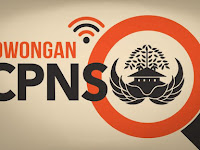 Pengumuman Akhir Kelulusan CPNS SSCN.BKN.go.id 2018/2019