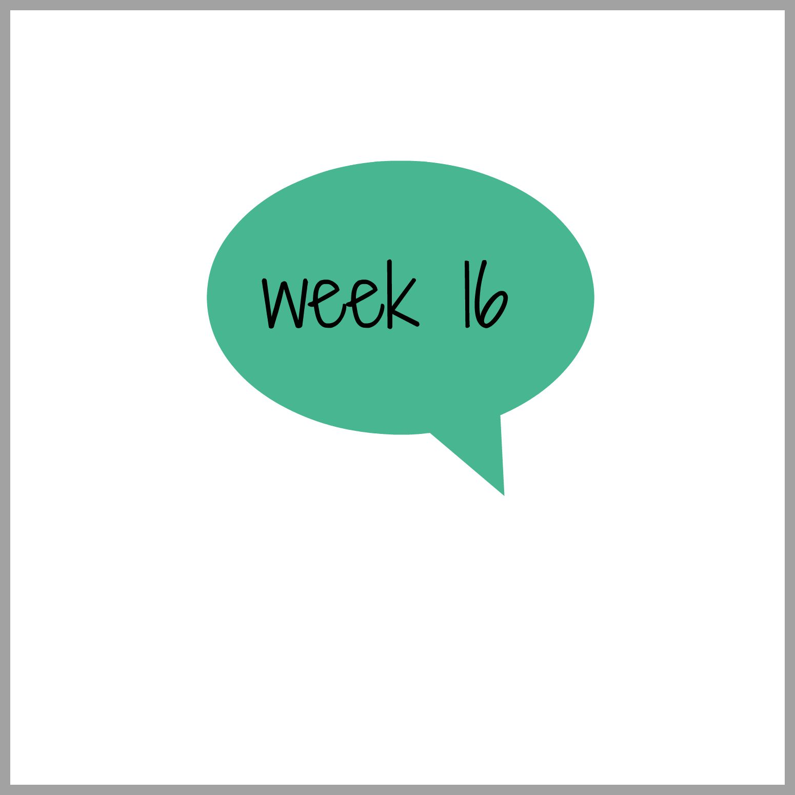 Tydzień 16, 16 tydzień, ciąża