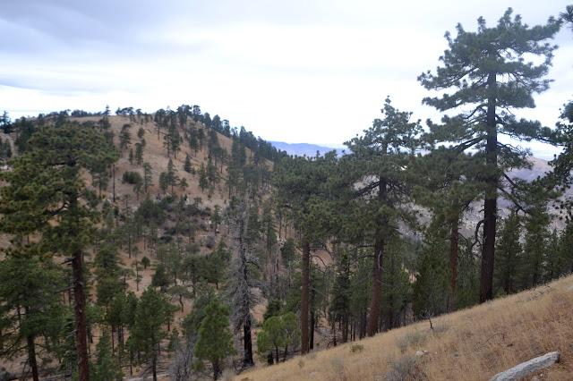 steeper climb