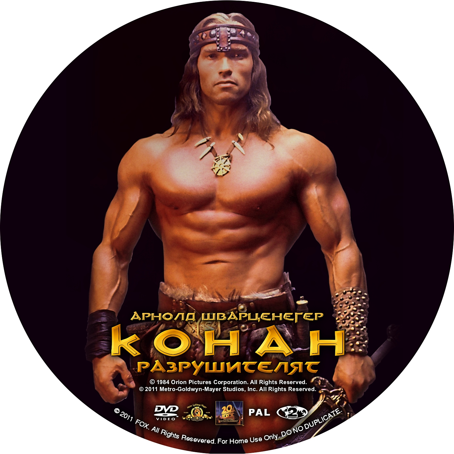 Conan the Destroyer (1984) - R1 Custom DVD Cover