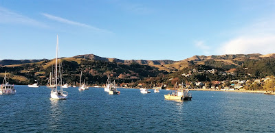 Creates Sew Slow: Akaroa