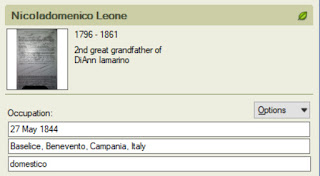 My great great grandfather was a domenstico, or servant.