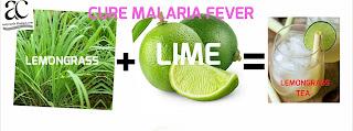Cure Malaria Fever With Lemongrass