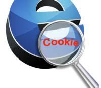 cosa sono i cookies su internet