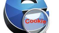 Cosa sono i cookie di internet? sono pericolosi per la privacy?