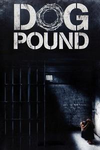 Watch Dog Pound Online Free in HD