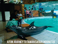 A Fun Journey to Taman Safari Indonesia