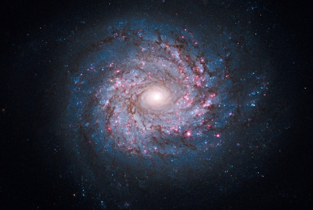Une galaxie vue de face, capturée par Hubble en octobre 2010.