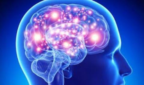 6 Cara Menjaga Kesehatan Otak Secara Alami