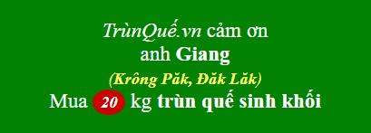 Trùn quế Krông Păk: cảm ơn anh Giang mua 20kg (ghé trực tiếp)