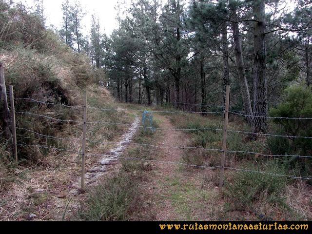 Ruta Alto Aristebano, Estoupo, Capiella Martín: Alambrada en el camino