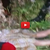 Watch: Dalagitang naglalakad ng 3 oras para makapag-aral, ginahasa, pinatay