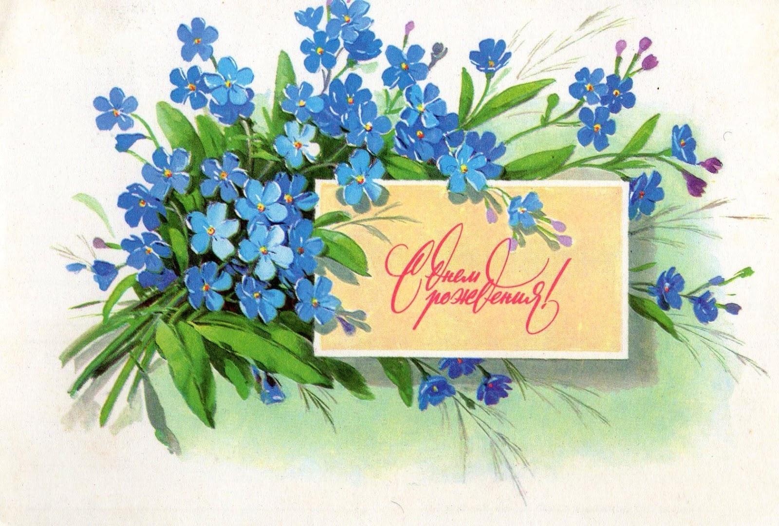 с днем рождения полевые цветы фото