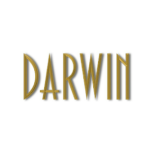 Darwin International - Your top luxury travel choice