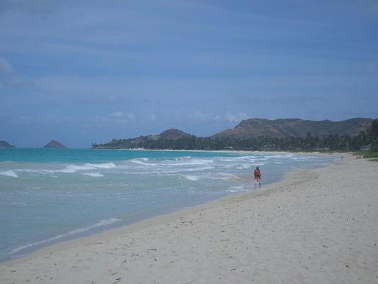 wailua praia havai