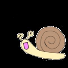 calm snail