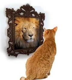 Mejora tu autoconfianza de 5 maneras poderosas
