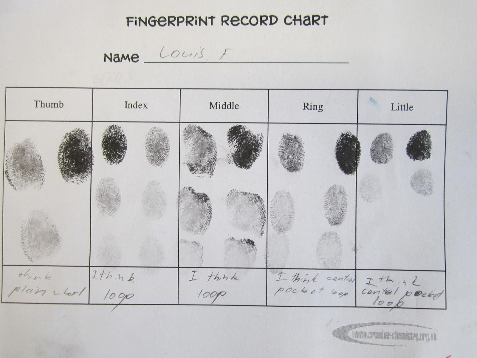 Crime patterns Essay