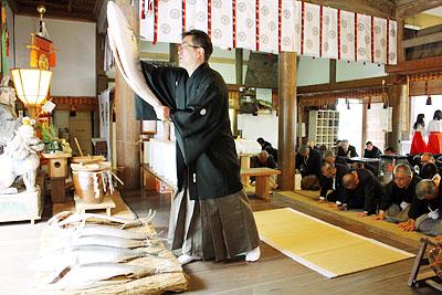 Buriwake Shinji (Yellow Tail Fish Festival), at Kamo Shrine, Imizu City, Toyama