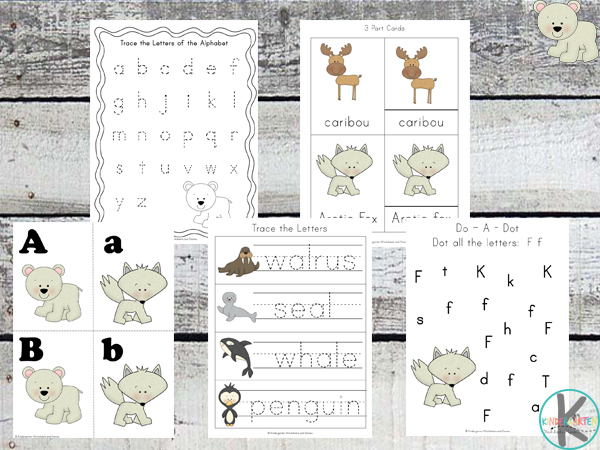 arctic animals alphabet worksheets
