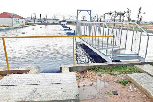 A water treatment at the Manhattan Special Economic Zone that environmental officials recently deemed inadequate. Photo supplied