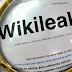 Αν για τη «διαρροή» των wikileaks ευθύνεται η Ελλάδα, ετοιμαστείτε για πόνο και κλάμα
