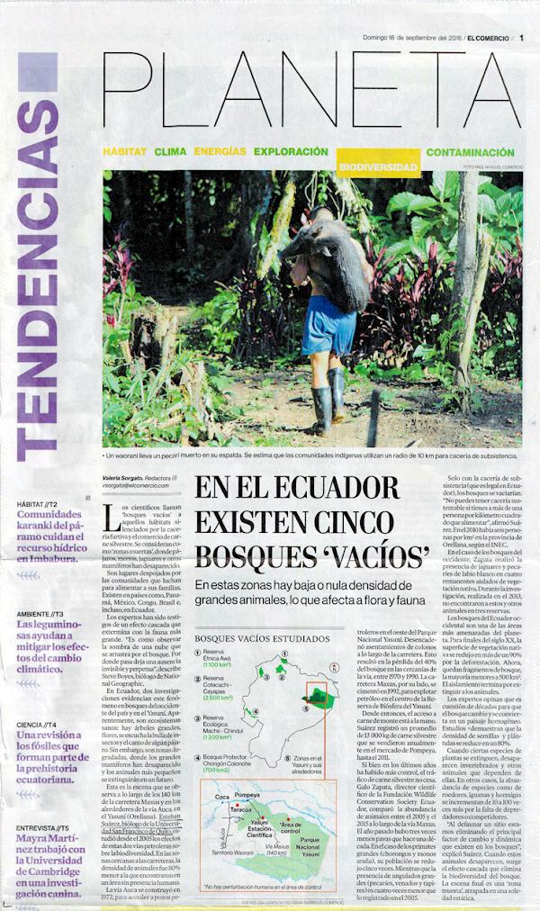 """Estudio Bosques """"Vacíos"""" - Esteban Suárez - COCIBA - Diario El Comercio"""