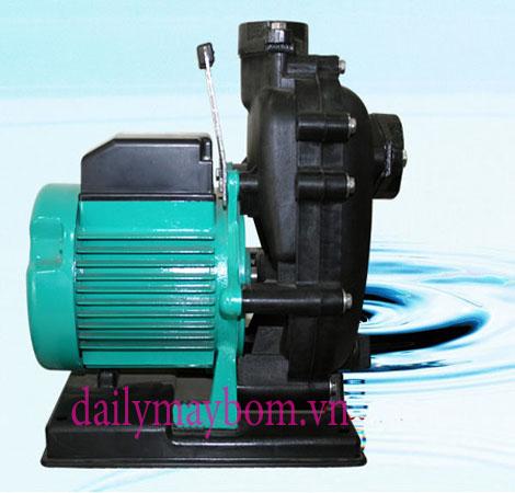 Máy bơm chìm nước biển | Đại lý máy bơm nước