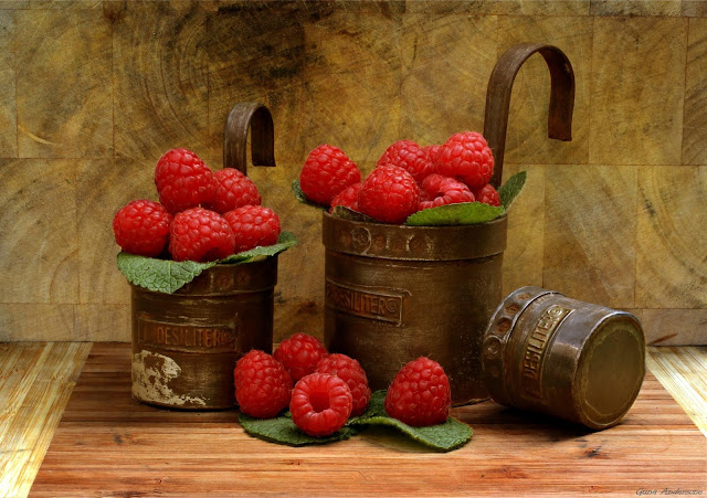 guna andersone raspberries image