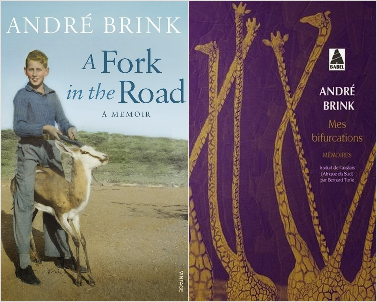 A Fork in the Road Mes bifurcations André Brink