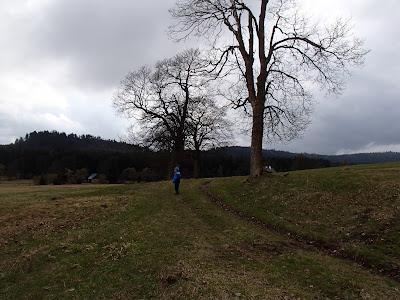 Sudety, Góry Stołowe, atrakcje turystyczne Gór Stołowych, Skalne Grzyby