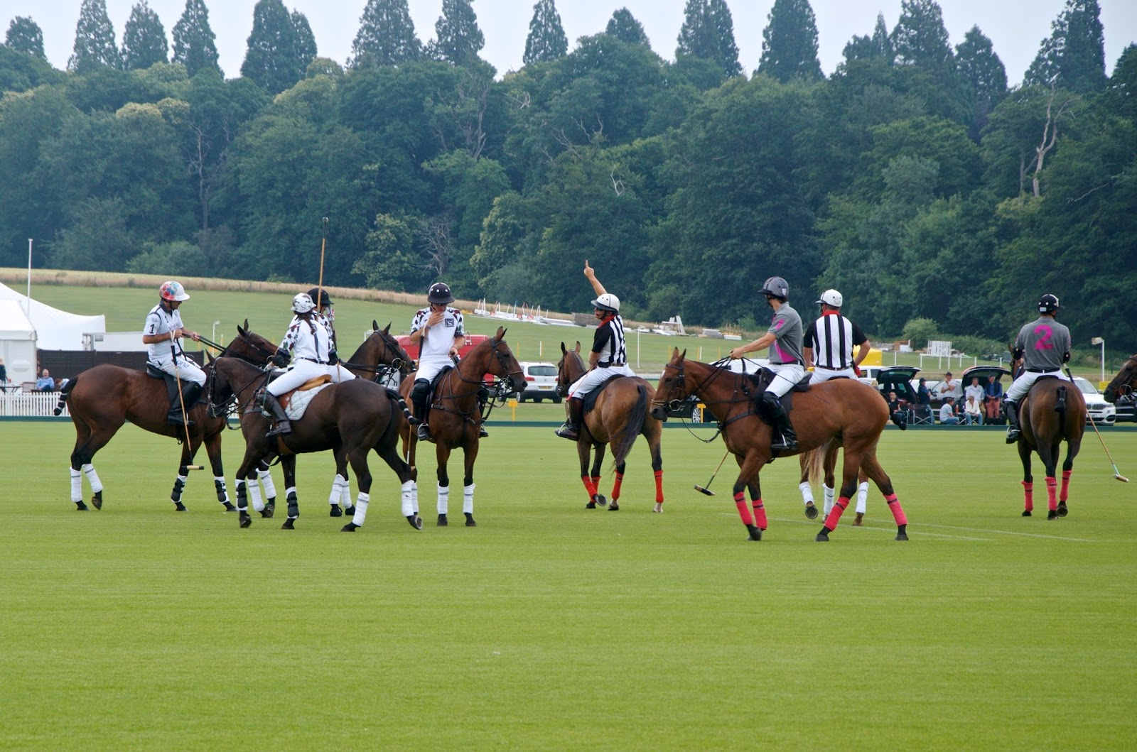 Jaeger Le Coultre Gold Cup polo match