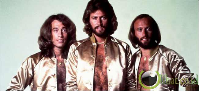 Robin and Maurice Gibb