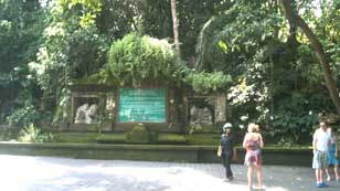 Hanya Ingin Berbagi Monkey Forest Ubud Bali