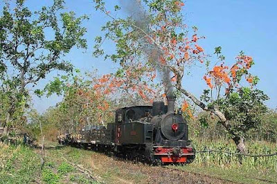 Locomotive tour