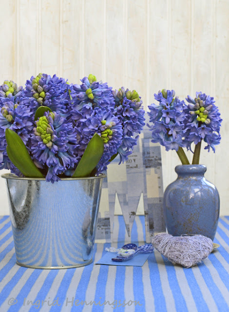 Of Spring And Summer Blue Hyacinths Moodboard