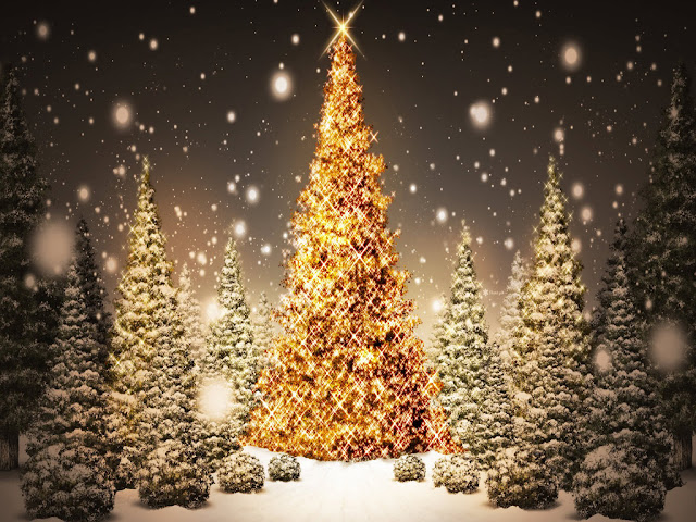 Free Ipad Wallpaper Christmas: Free Download Christmas Tree HD Wallpapers For IPad