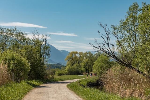 Moos-Rundweg Blaues-Land Murnau-staffelsee 03