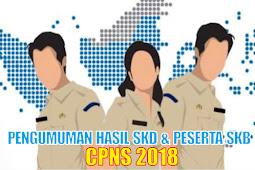 Semua Pengumuman Hasil SKD dan Peserta SKB CPNS 2018 Instansi Kabupaten/Kota Ada di Sini