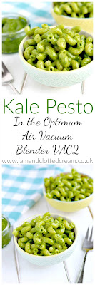 Kale Pesto in the Optimum Vacuum Blender VAC2