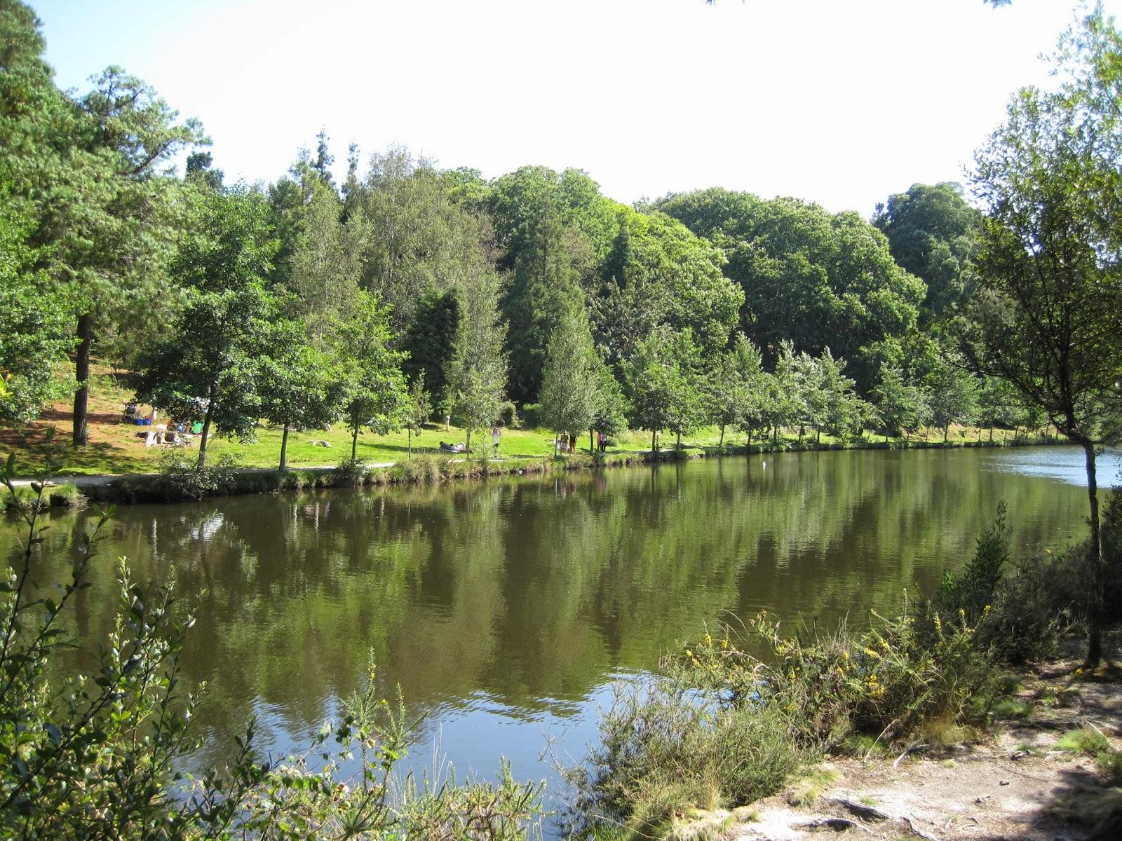 Lago de Castiñeiras en Cotorredondo