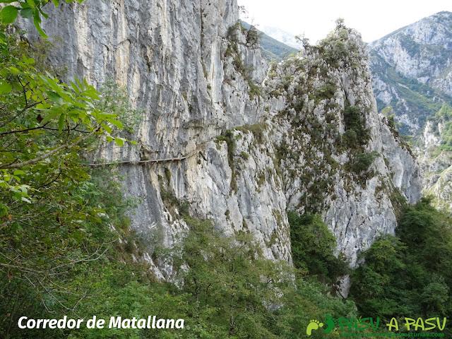 Canal de Reñinuevo: Vita del Corredor de Matallana