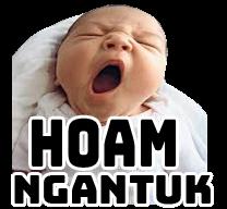 Hoam Ngantuk