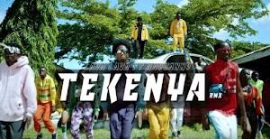 Download Audio   Lava lava ft Rayvanny - Tekenya