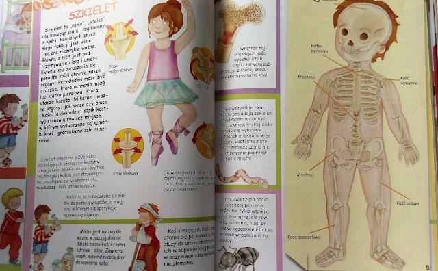 recenzje ksiazek dla dzieci cialo czlowieka