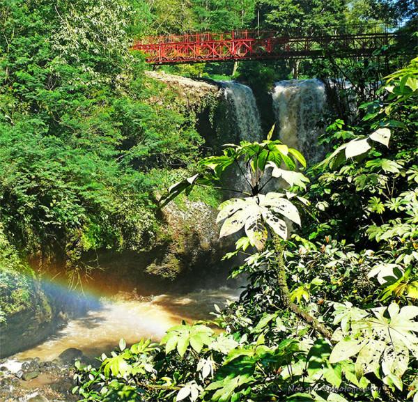 Suguhan alam yang indah dan menyegarkan di Taman Wisata Alam Maribaya Bandung