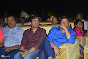 Nenu Local Audio Launch-thumbnail-16