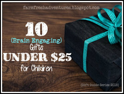 10 Brain Engaging Gifts Under $25 for Children