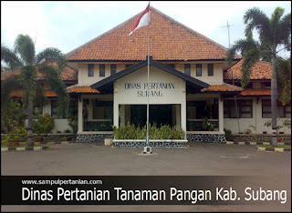 Alamat Dinas Pertanian Tanaman Pangan Kabupaten Subang